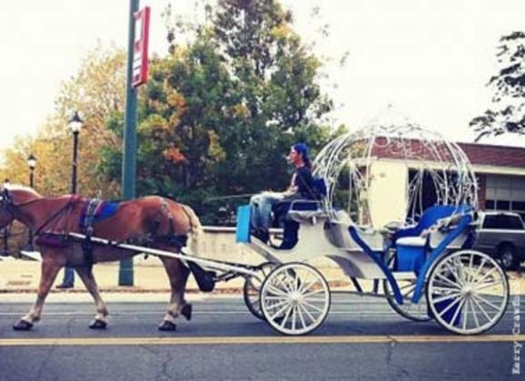 Carriage drivers deliver not only spectacular views of the city - but its history as well. Photo by Kerry Crawford.