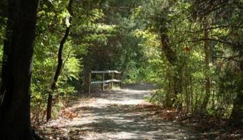 Nature Trail at Lichterman Nature Center - Photo by Kerry Crawford